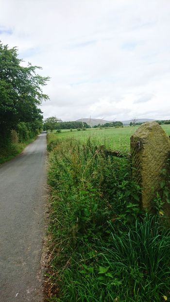 Nature On Your Doorstep Natural Beauty Countryside Country Road Green In The Distance Mountain View Getting Away From It All Going For A Ride  Check This Out Taking Photos Hello World The Trough of Bowland,