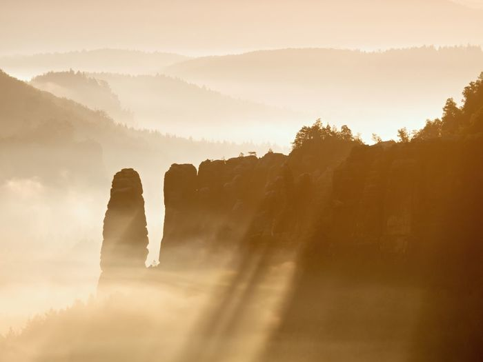 Misty awaking of beautiful fairy valley. peaks of rocks cut creamy foggy clouds. fog is shinning