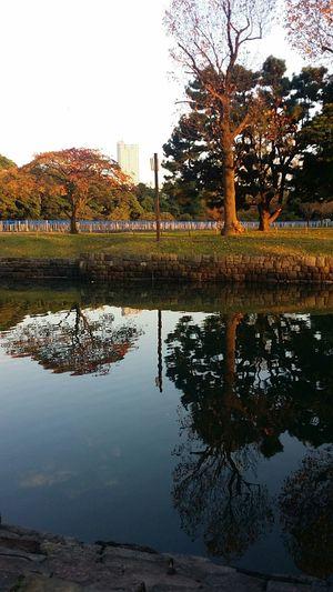 Dusk Hamarikyu Gardens Tokyo Tokyoautumn2016 Tokyoautumn