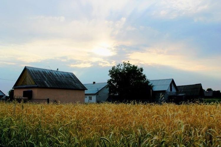 Sky Farm Rural