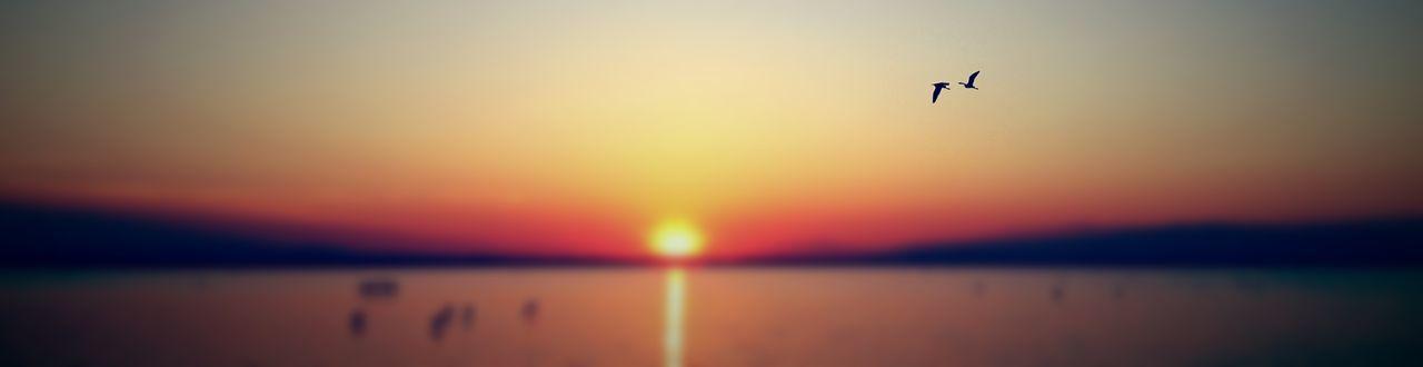 Nature_collection #eyeemnaturelover #nature Sunset #sun #clouds #skylovers #sky #nature #beautifulinnature #naturalbeauty Photography Landscape [ Bird Paradise Sasalı Doğal Yaşam Parkı Sea Sea And Sky Bird Photography Seabirds Flamingos Nature Birds The Great Outdoors - 2017 EyeEm Awards Breathing Space Colour Your Horizn #FREIHEITBERLIN The Traveler - 2018 EyeEm Awards The Great Outdoors - 2018 EyeEm Awards
