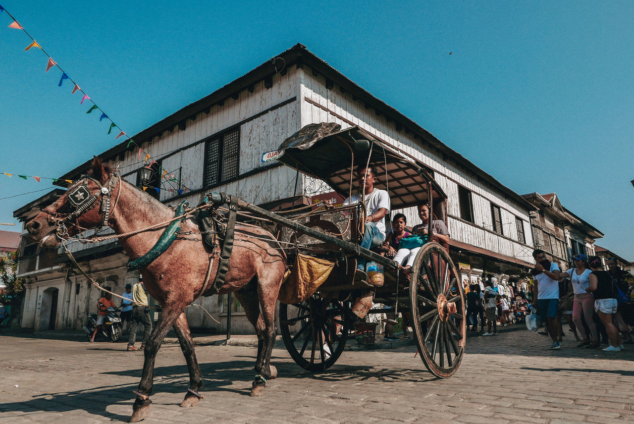 built structure, architecture, building exterior, horse, clear sky, transportation, sky, mode of transport, domestic animals, day, outdoors, mammal, large group of people, men, blue, real people, horse cart, people