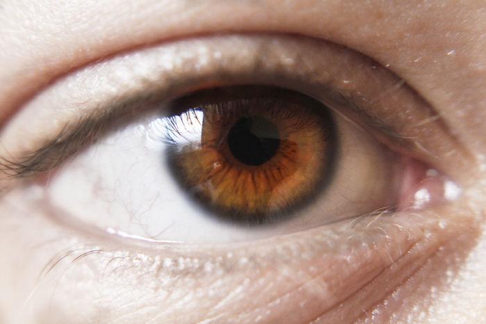 Backgrounds Close-up Day Extreme Close-up Eyeball Eyelash Eyesight Full Frame Human Body Part Human Eye Iris - Eye Macro One Person People Portrait Real People Sensory Perception