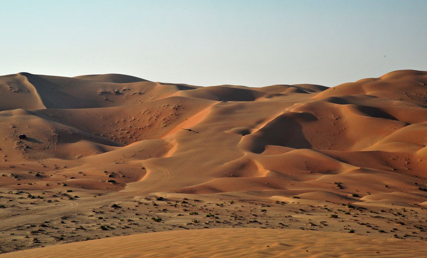 Desert EyeEmNewHere Arid Climate Atmospheric Barren Beauty In Nature Clear Sky Climate Day Desert Environment Land Landscape Nature No People Non-urban Scene Outdoors Remote Sand Sand Dune Scenics - Nature Sky Tranquil Scene Tranquility