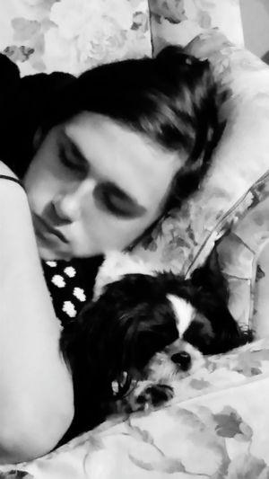 Son Dog Love