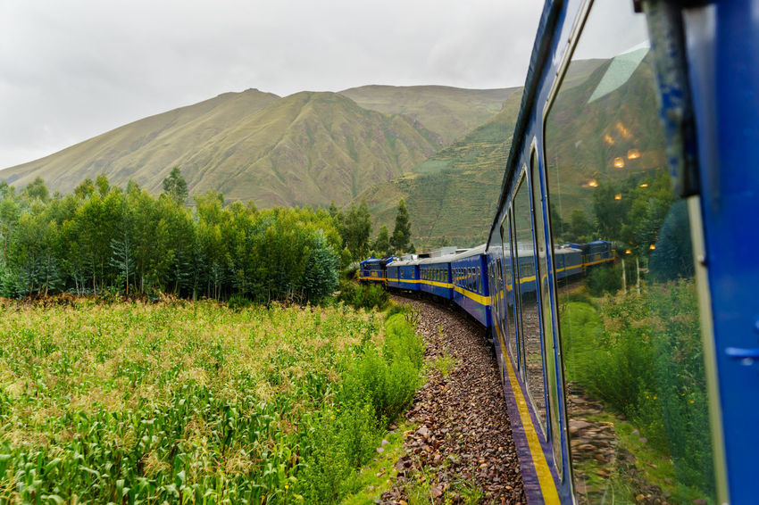 Altitude America Anden Cocktails Cusco Dancer Express High Historical Sights International Landmark La Raya Haircut Lama Music Old People Peru Peru Rail Puno Rail South Traditional Train Train Tracks Travel Landscapes With WhiteWall