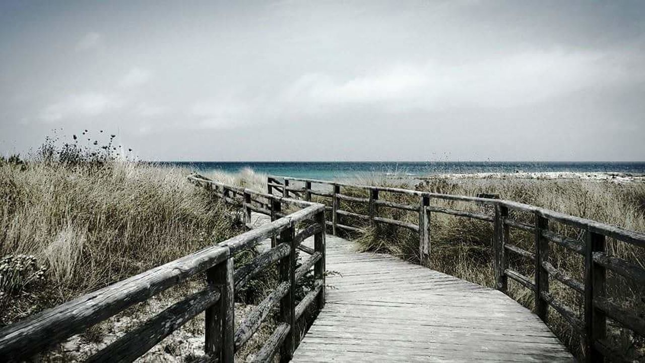 sea, railing, water, horizon over water, tranquil scene, nature, tranquility, scenics, day, outdoors, grass, beauty in nature, no people, sky