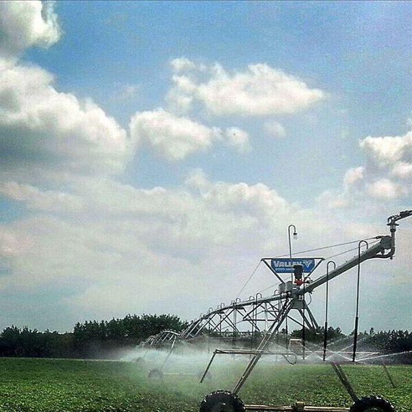Potatos Irrigator Minnesota Potatofield Water Irrigation Beautiful Farm Mydadsfield Fleishauer Wisconsin Rdoffuttcompany Remember Farmgirl Taramae