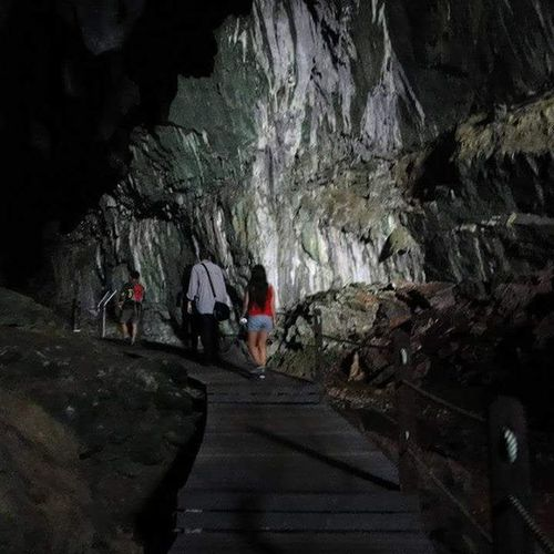 Borneo Travel Caves Firsttimearound Longhairdontcare Mulu Eurasian