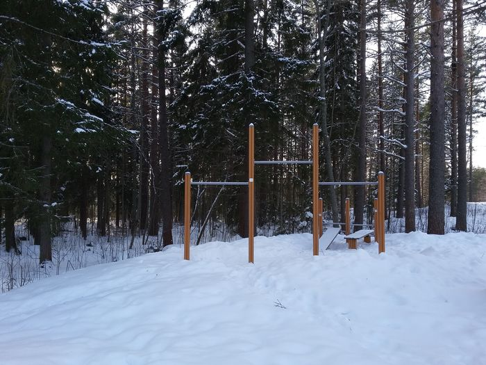 A place for street work out. Cold Temperature Snow Tree Winter Nature Outdoors Playground Day Landscape No People Beauty In Nature Sports Active Lifestyle  Get Fit 💪 Leisure Activity