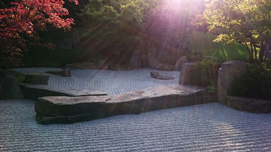 EyeEm Nature Lover Dosomethingonsunday Gardens Japanese Garden