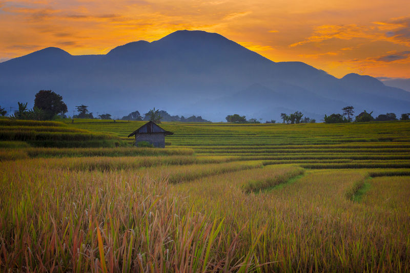 Scenic view of field against mountains during sunset