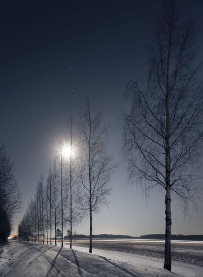 Landscape with moonlight and nice shadows at winter time in southern Finland Bare Tree Beams Beauty In Nature Birch Car Lights Cold Temperature Countryside Dark Forward Landscape Light And Shadow Moon Moonlight Nature Nature Night No People Outdoors Rays Road Sky Snow Tree Winter