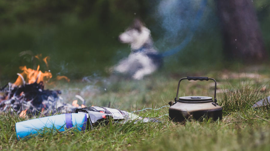 Teapot by campfire on grassy land
