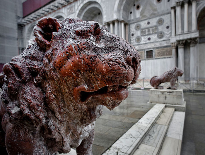 Italy, Venice, Grand Canal, Piazza San Marco Ancient Civilization Animal Representation Art Art And Craft Brown Close-up Creativity Culture History Human Representation Natural Pattern No People Old Ruined Sculpture Statue Textured  Wood