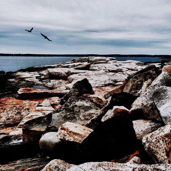 Rocky Coast Of Maine Water Ocean Boothbay Harbor Maine