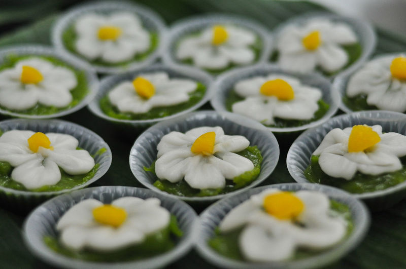 Close-up of white flowers in plate