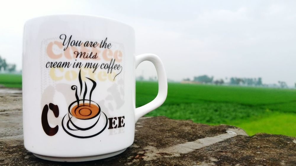 Rainy Days☔ Coffee ☕ View No People Tree Paper Currency Close-up Day Cups And Mugs Soft Focus Awsomeness Pics Photography