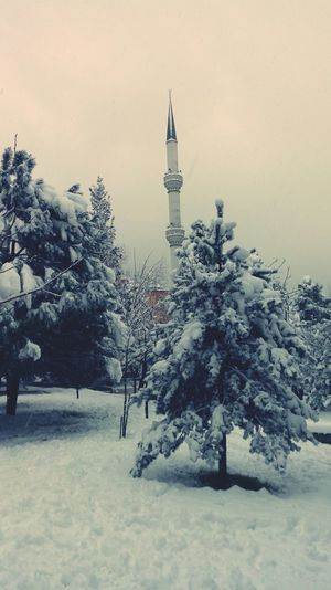 Hello World Hi! Park Landscape Its Cold Outside EyeEm EyeEm Best Shots EyeEm Nature Lover Snowy Days... Wiew Photography Popular Photos Popular First Eyeem Photo My Best Photo 2015 The Week Of Eyeem LG G4📱 Mosque Minaret First Snow Snow ❄ Snowy Snowday Trees Tree