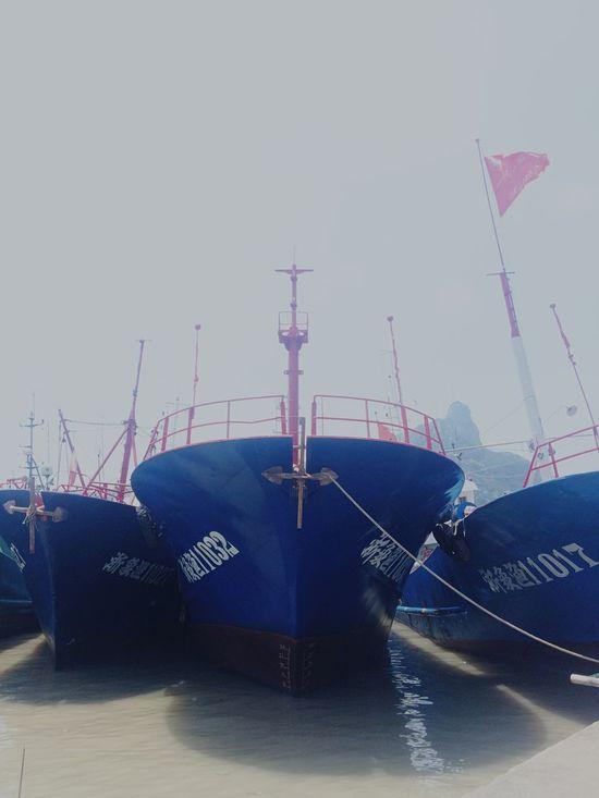 Hello World Taking Photos Enjoying Life Fish Ship Harbour Sea Side Sea View