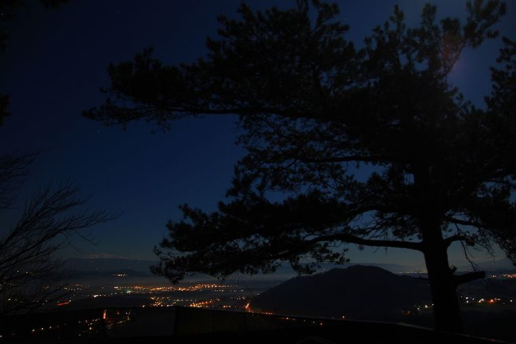 Darkness, Kitzelberg AUT Night Tree Silhouette Beauty In Nature Nature Sky Dusk Branch No People Outdoors Scenics Star - Space Blue Illuminated Colour Your Horizn