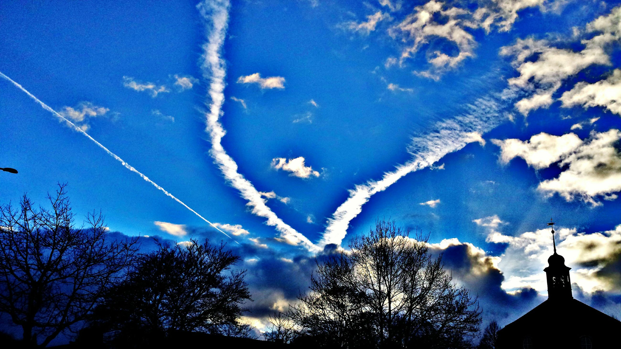 sky, low angle view, tree, vapor trail, nature, scenics, beauty in nature, no people, outdoors, day, contrail