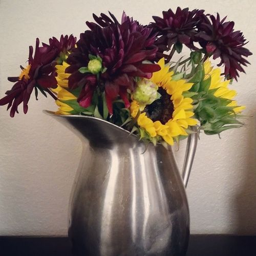 Loving my fresh cut flowers in a pitcher I saved from the thrift store Flowerpower Pitcherperfect
