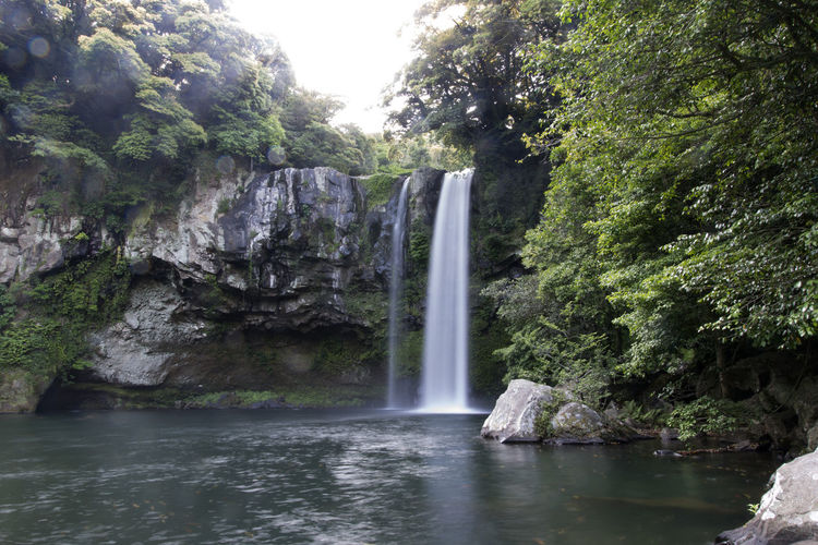 Cheonjiyeon Waterfall in Jeju Island, South Korea Beauty In Nature Cheonjiyeon Falls Cliff Day Environment Forest JEJU ISLAND  Jeju Island, Korea Lake Long Exposure Motion Nature No People Outdoors Plant River Rock - Object Rock Formation Rocks Scenics Tourism Tree Water Waterfall Waterfront