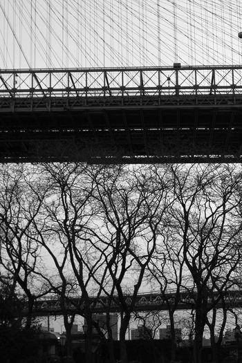 Brooklyn New York Brooklynn Bridge