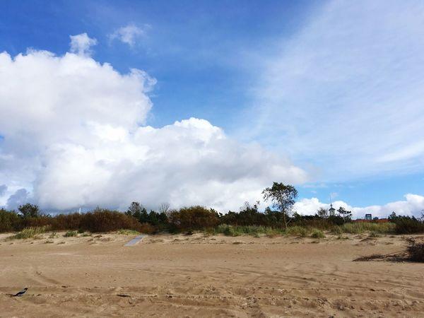 Sandy beach Sandy Beach Sand & Sea Sand Sand Dune Dunes Sand Dunes Sand Beach Beach Life Beach Photography Beachphotography Baltic Sea Baltic Coast