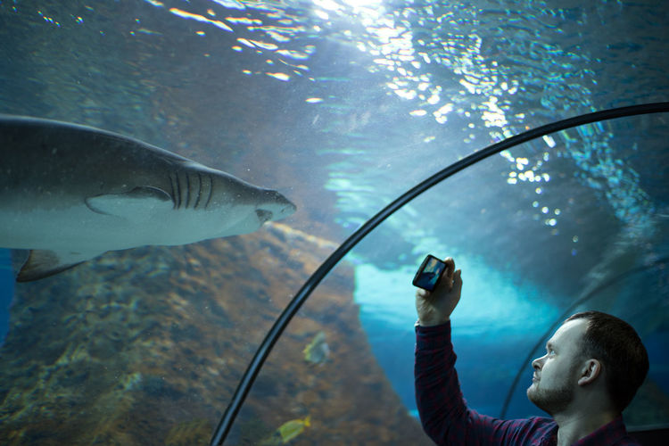 Young man photographing fish in aquarium