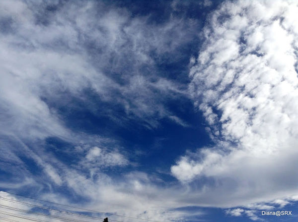 Do U See What I See ? Clouds And Sky Clouds The Purist (no Edit, No Filter) puri