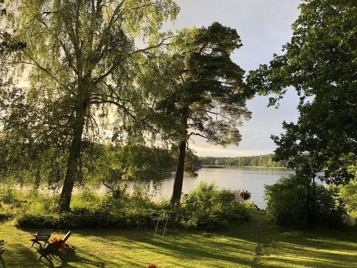 Scenic view of lake and trees in park