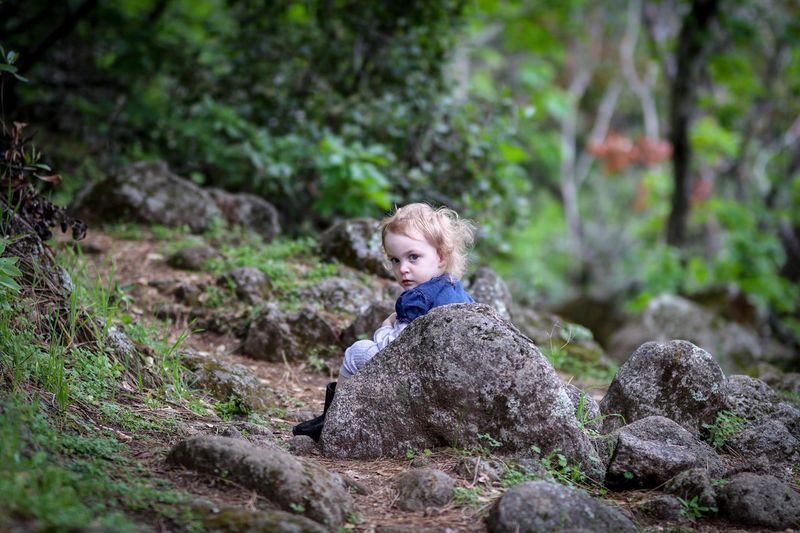 Boy looking away while sitting on rock in forest