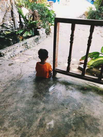 One Person Men Boys Rear View Real People Childhood Child Day Males  Architecture Sitting Lifestyles Plant Outdoors Leisure Activity Built Structure Nature Looking Innocence