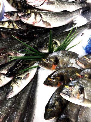 Fish Fish Market Fish Markets Dorade Mediterranean  Mediterranean Food Mediterranean Fish Ice Freshness Fresh Food Selling Fish
