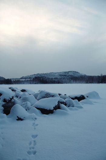 Wintertime Snow