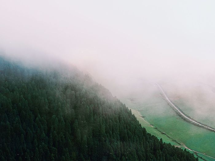 sublime 🌲 Moody Sky Simplicity Outdoors Adventure Nature_collection Travel Destinations Travel Azores Environment Plant Field Beauty In Nature Nature No People Green Color Scenics - Nature Tranquility Tranquil Scene Land Day Growth Landscape Rural Scene Outdoors Fog Water Autumn Mood Autumn Mood