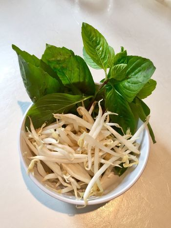 Food And Drink Leaf Food Freshness No People Healthy Eating Indoors  High Angle View Bowl Close-up Ready-to-eat Day Bean Sprouts Vegetables Clean Table Basil