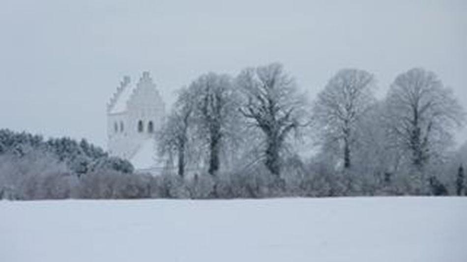 Winter In Denmark Snow Winter Beautiful