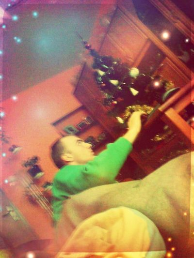 My Boyfriend ❤ Love ♥ Tibia Christmas Tree