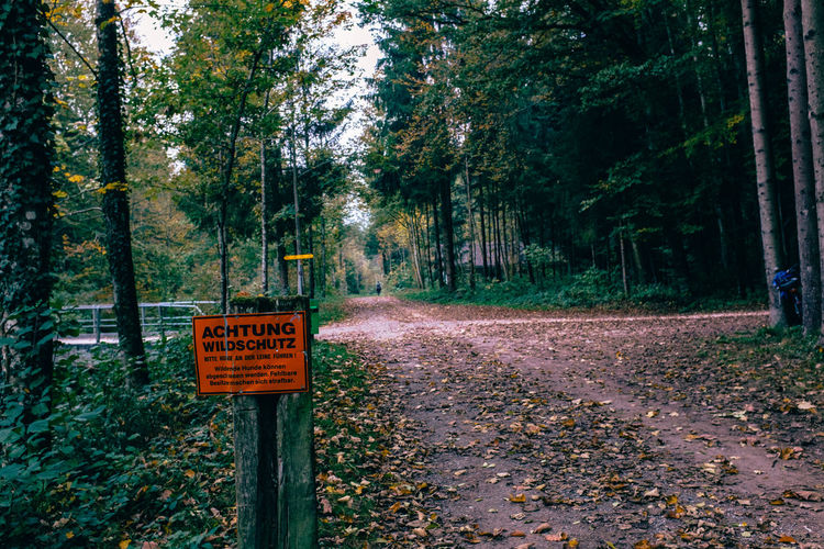 Sign On Wooden Post By Pathway Amidst Trees In Forest