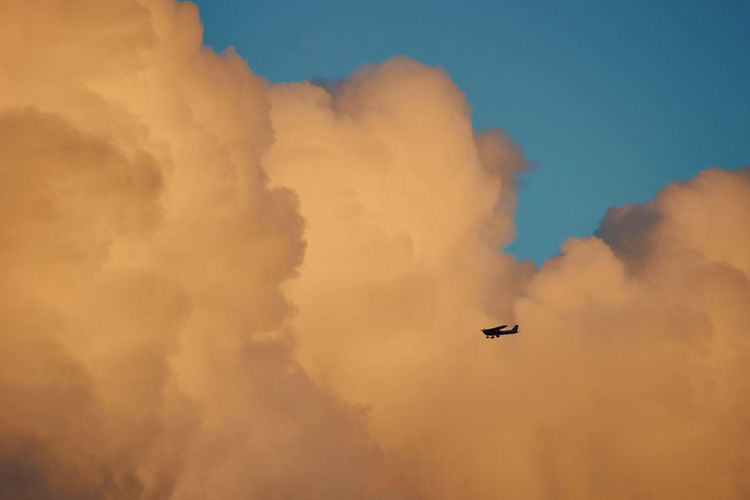 Flying at sunset... Low Angle View Sunset Beauty In Nature Nature Mid-air Transportation Airplane Mode Of Transportation Flying Sky Plane Orange Color on the move Cloud - Sky Air Vehicle No People Outdoors Scenics Landscape Motion Sky And Clouds Blue Transportation Aroundtheworld White Color