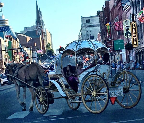Horse and Buggy