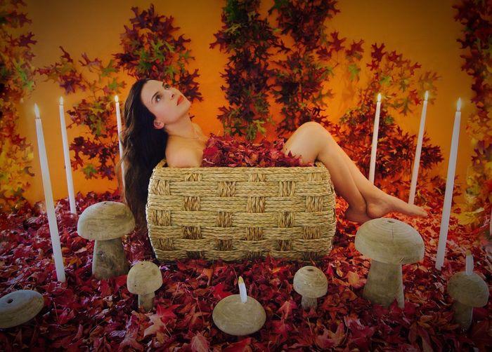 Fall harvest🍁🍂🍃🍄