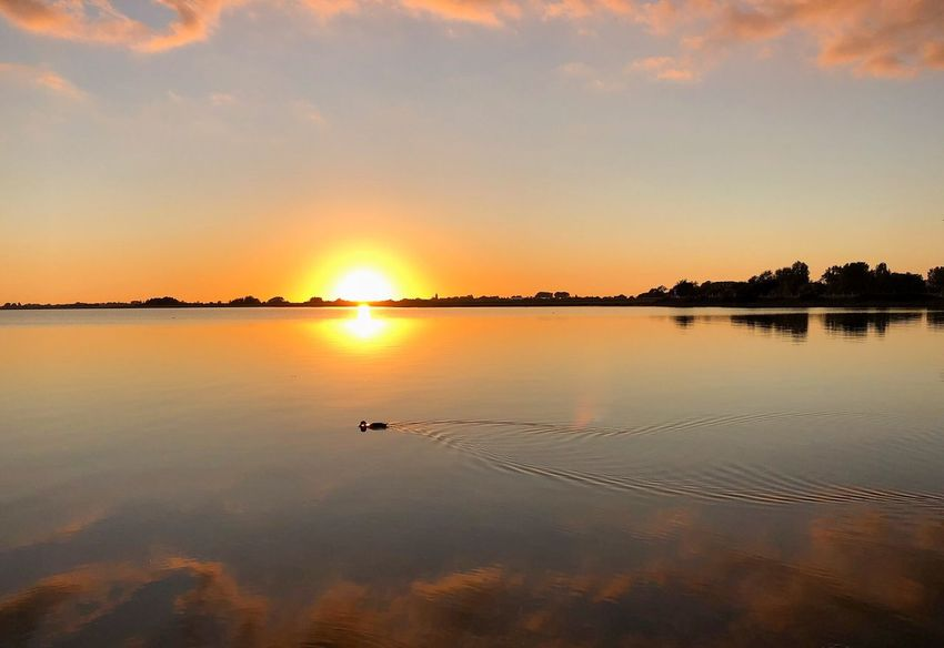No Edit/no Filter Fehmarn Sunset Sky Water Beauty In Nature Tranquility Reflection Scenics - Nature Tranquil Scene Nature Sun Cloud - Sky No People Orange Color Lake Beach Idyllic Land Non-urban Scene Outdoors