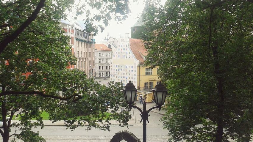 Relaxing Taking Pictures Latvia Riga City Leaves🌿 Trees And Nature Nice Atmosphere Sun Is Shining Hill Pretty View:) Bastion Hill Houses And Windows Houses Sommergefühle