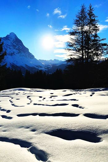 Eiger North Wall Nature Snow Winter Cold Temperature Scenics Tranquility Beauty In Nature Landscape Mountain
