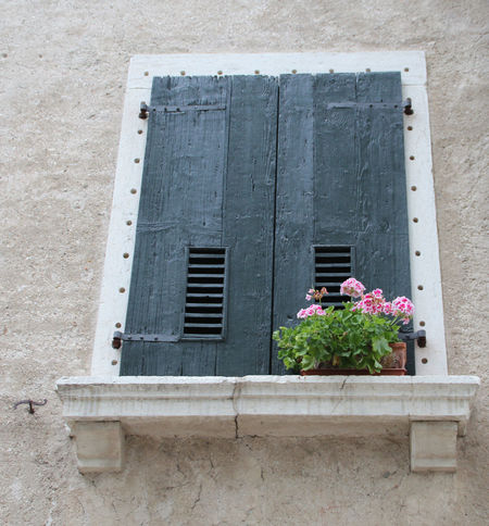 Balcony Building Exterior Built Structure Closed Window  Façade Flowers House Italy Italy❤️ Residential Structure Shutters Window Windows