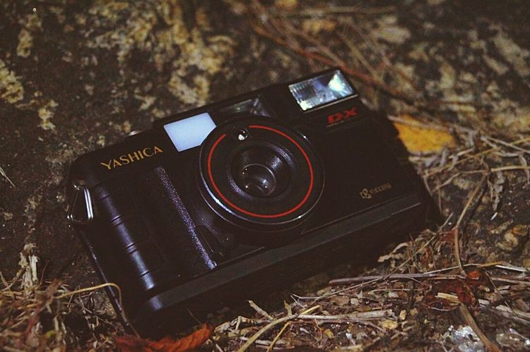 Yashica Camera Oldschool Gadget Technology Close-up No People Outdoors High Angle View Dried Leaves Stone Background in Guwahati India Assam, India Lieblingsteil
